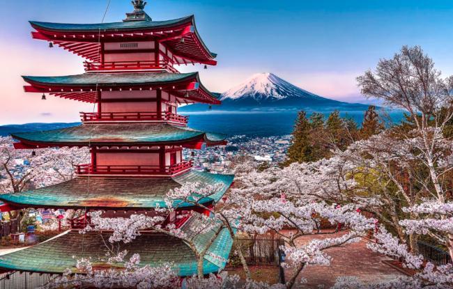 Япония во время цветения Сакуры!